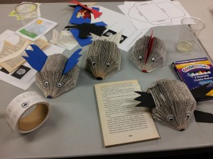 Paperback Hedgehogs